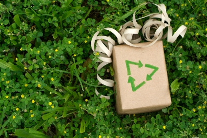 6 Great Tips for an Eco-Friendly Christmas